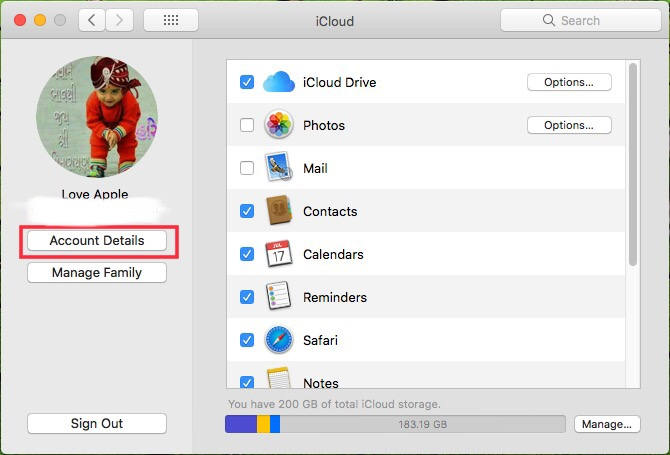 Click on Account details in iCloud