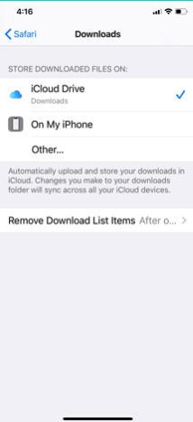 Change Default Safari Download manager path