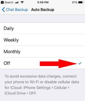 4 Turn off WhatsApp Backup on iPhone