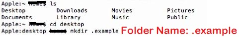 Create hidden folder under your Mac folder directory