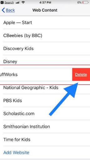 Delete Block unwanted website on iPhone XS Max XR X 8 Plus 7 Plus 6S Plus iPad Pro iPad Mini Air