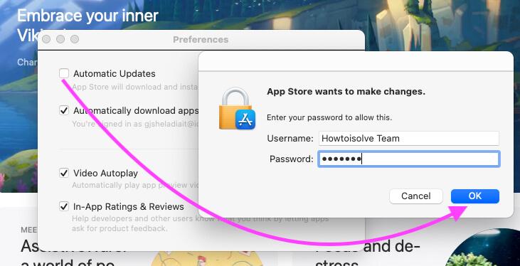 Automatic Update on Mac