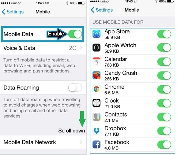 how to enable or turn on mobile data on iPhone 6, iPhone 6 pLus and iPhone 5S and IOS 9 and iOS 8