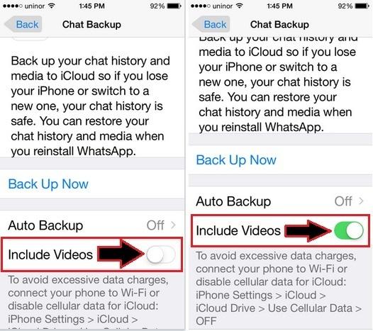 Want to take backup WhatsApp Video on iPhone, How to Backup Whatsapp Chat Videos on iPhone 6, 6 Plus