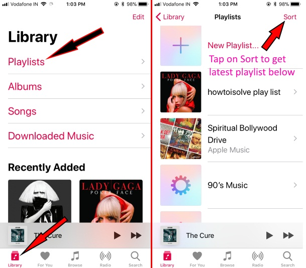 Edit Playlist in Apple Music on iPhone iPad iPod Touch