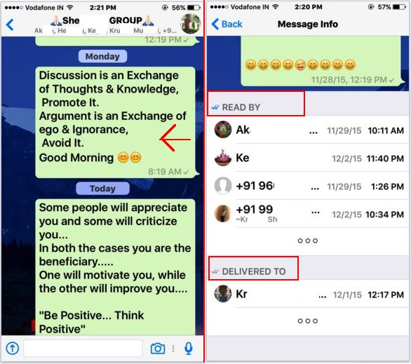received and read message in WhatsApp group on iPhone, iPad