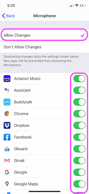 Remove the Microphone Restrictions from iPhone screen time settings
