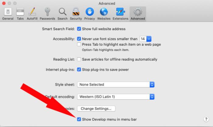 Show Develop Menu in macOS