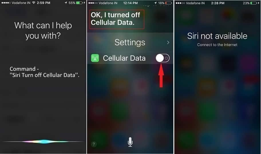 Using Siri, you can turn off Cellular data