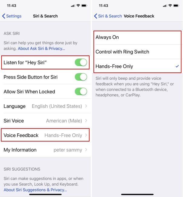 1 Siri not Working on iPhone
