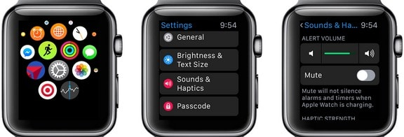 1 Level Up low call volume on Apple Watch