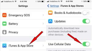 tap iTunes and App Store to eanble Use Celluar data for App update install iOS iPhone iPad