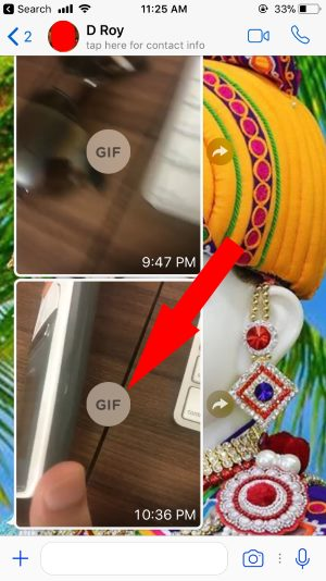 10 Gif send in WhatsApp conversation from live photo in iOS 11