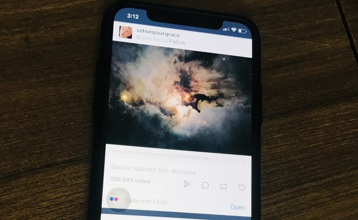 1 Tumblr Safe mode enable on iPhone from settings