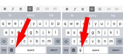 3 Microphone option key on iPhone Keyboard