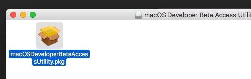 2 Extract DMG file on Mac and find pkg file (1)