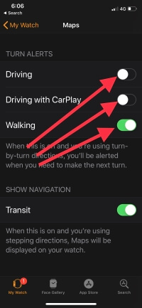 3 Turn Alerts for Maps of Apple watch on iPhone settings