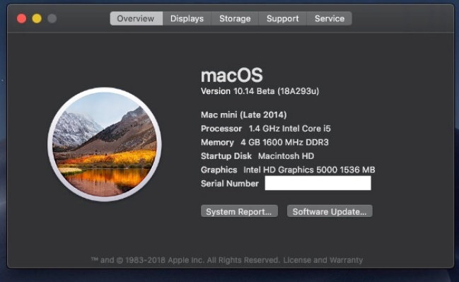 macOS Mojave System Report