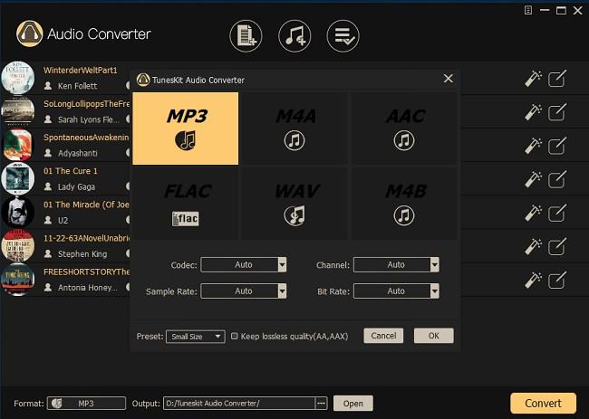 Choose Tuneskit Output Format