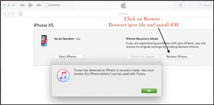 1 Restore iPhone XS Max in DFU Mode