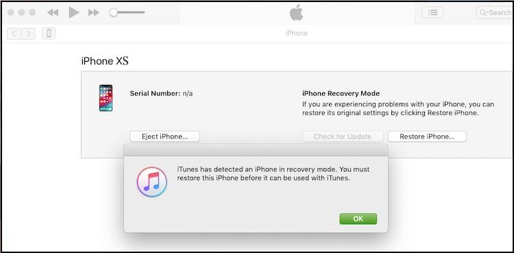 1 iPhone XS Restore using iTunes