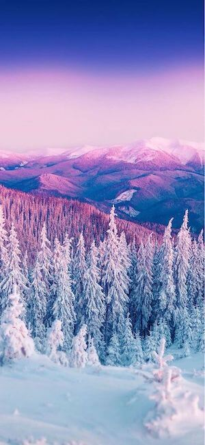 2 Winter Wallpaper for iPhone XS iPhone XS Max and iPhone XR Download