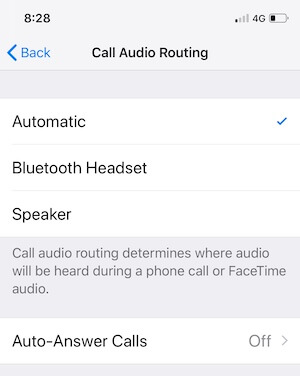 Call Audio Routing on iPhone XR (1)