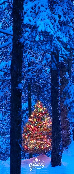 Christmas Tree Wallpaper with Snow Wallpaper for iPhone XS max iPhone XS and iPhone XR