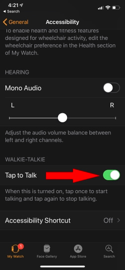 Enable Tap to Talk for Play Walkie Talkie Audio Message on Apple Watch