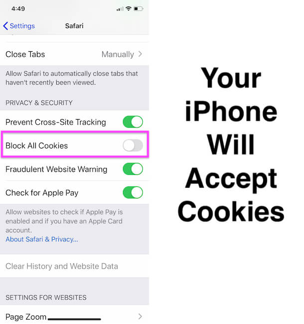 Allow Cookies on your iPhone from From website you visiting