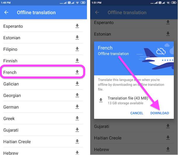 Download Language for Offline Translate