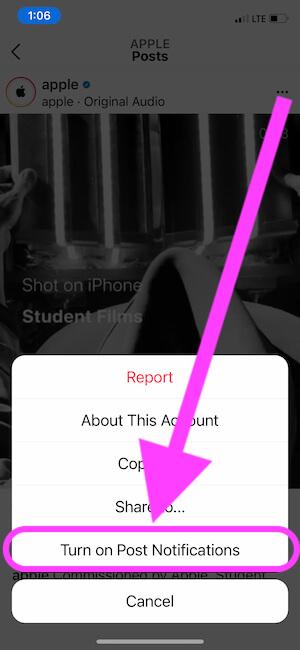 Turn on Post Notifications on Instagram App on Mobile