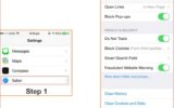Set Browser security in iPhone