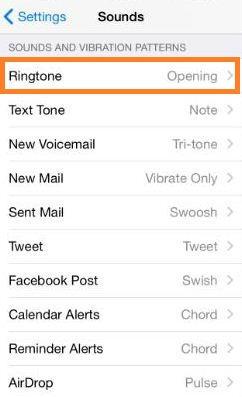 Customized vibrate on iPhone, iPad Step 2