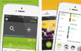 Diabetes Companion app for iPhone and idevices