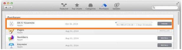Check download status in Mac