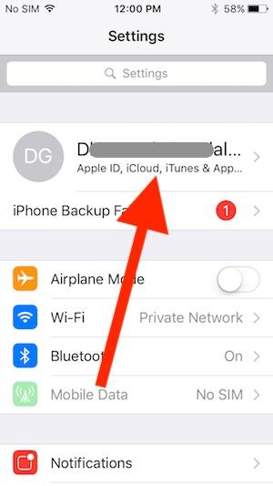 1 iOS 10 iPhone profile on Settings app