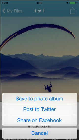 Share file directly from WinZip app in iOS device