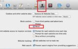 Safari settings option for Cookies and Reset safari on Mac and PC