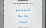 Find logged in apple ID in iPhone running on iOS 8 screen