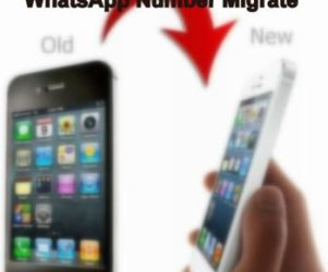 Migrate WhatsApp iPhone number without lose data or uninstall