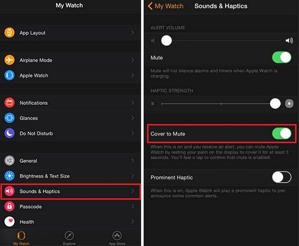put apple watch in to silent mode using iPhone