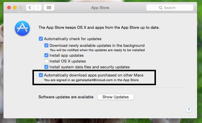 Enable auto update purchase app in App store