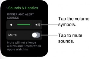 how to put apple watch in to silent mode from watch and iPhone: Alternate ways