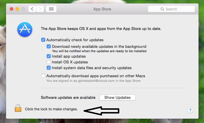 Enter valid login details for enable auto updates on Mac OS X