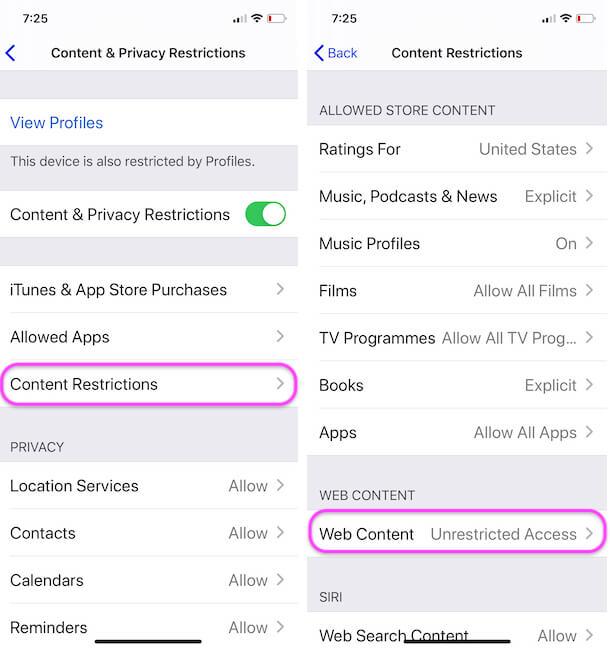 Web Content Restriction on iPhone Safari