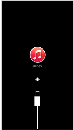 iOS device sync with iTunes screen