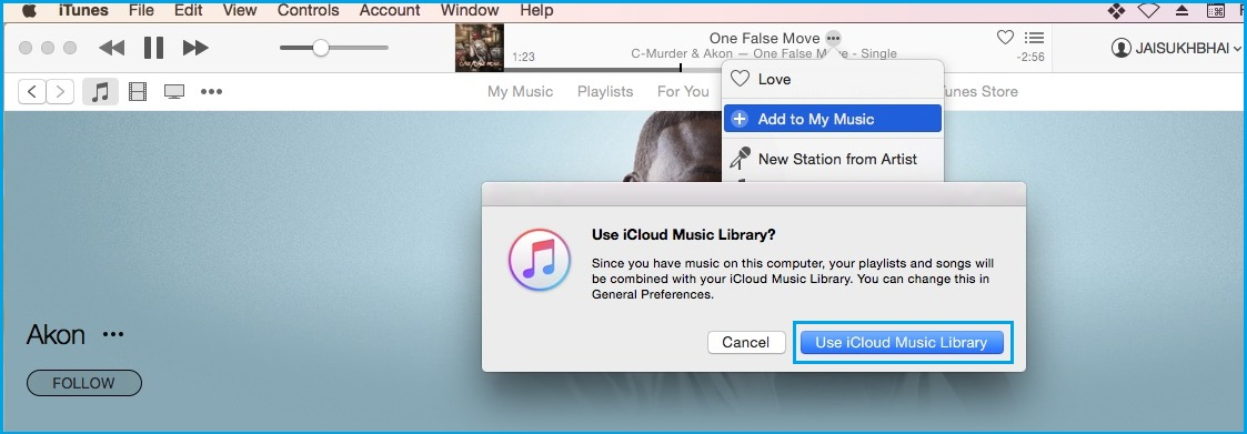 Allow apple music library on Mac
