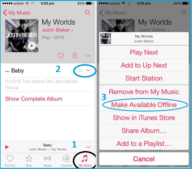 Get offline music from my music screen in iOS device