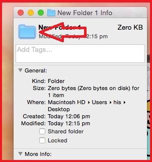 Click on Folder icon inside Get info